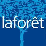 LAFORET IMMOBILIER SAE CONSEIL